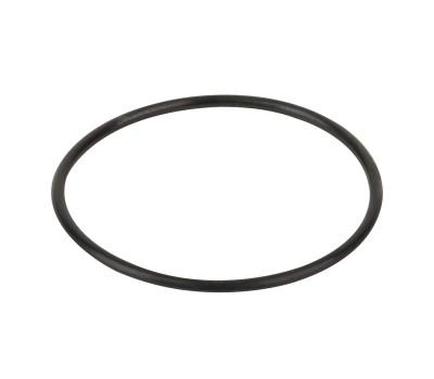 Уплотнительное кольцо крышки префильтра насоса Aquaviva SWIM 025-150